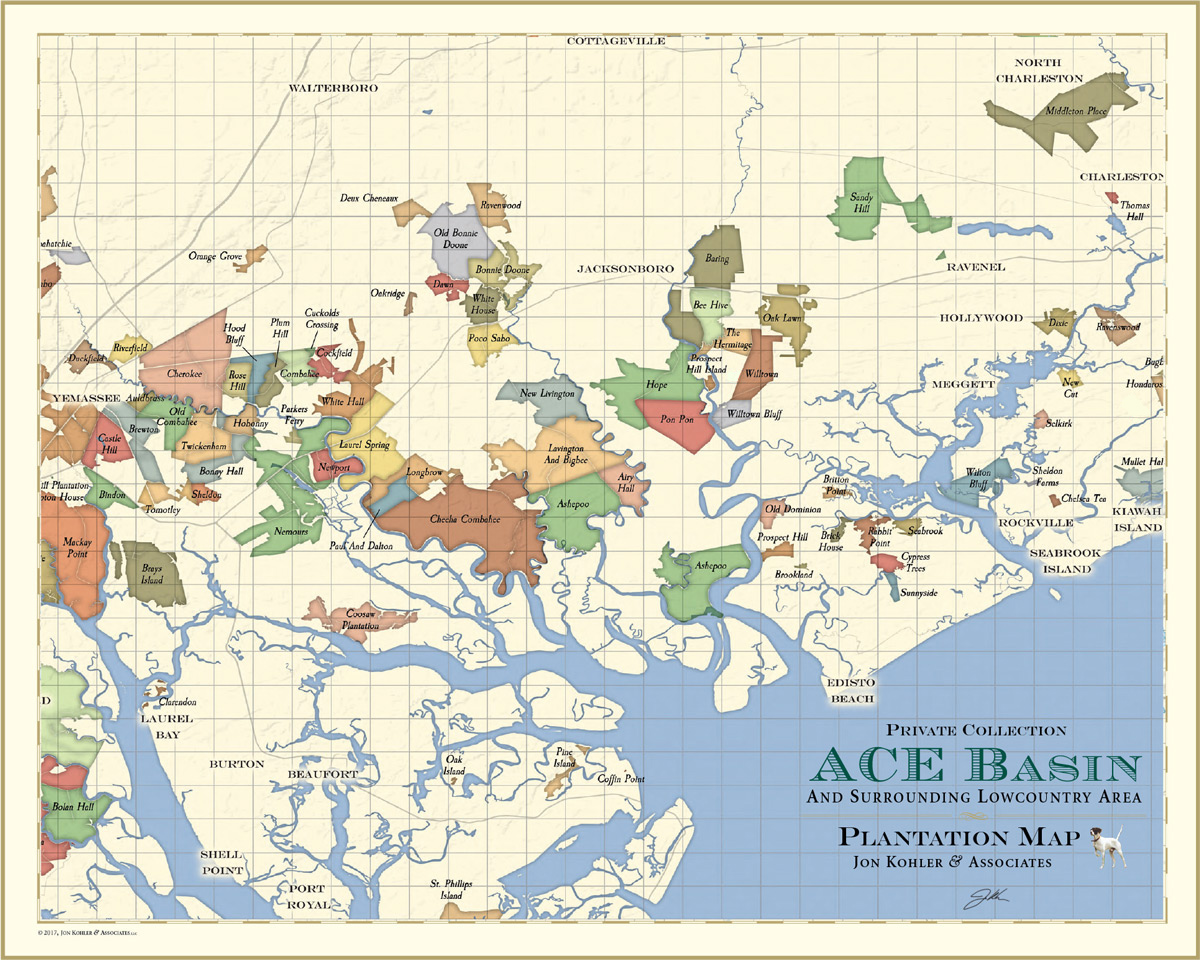 ACE Map